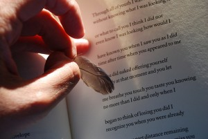 Feather Hand On Book
